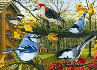 Cobble Hill 1000 pcs Puzzle - Blue Jay and Friends