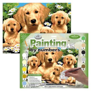 Painting By Numbers - 10 Colors Set : Golden Retriever Puppies
