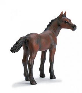 Schleich #13276 - Arabian Foal
