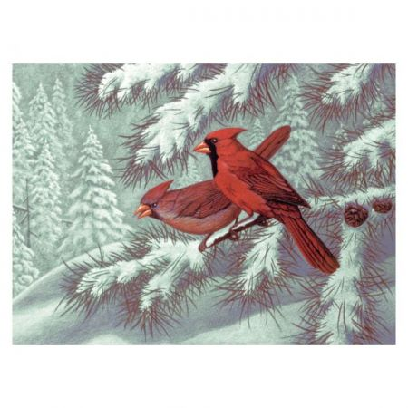 Painting By Numbers - 10 Colors Set : Cardinals