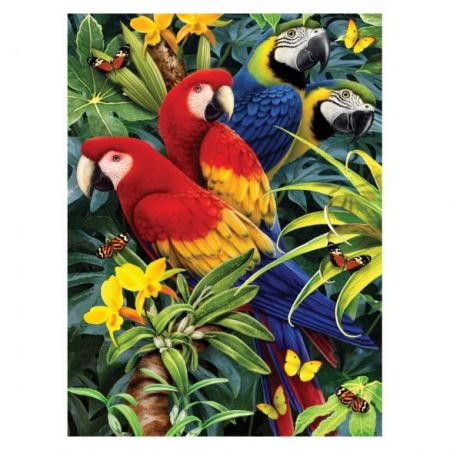 Painting By Numbers - 7 Colors Set : Majestic Macaws