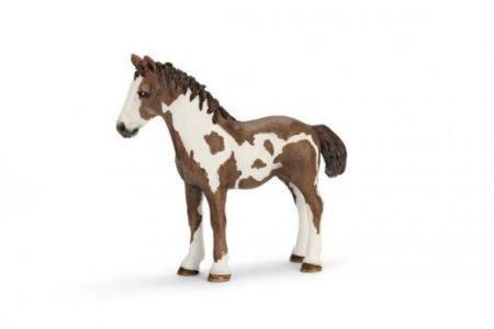 Schleich #13695 - Pinto Yearling